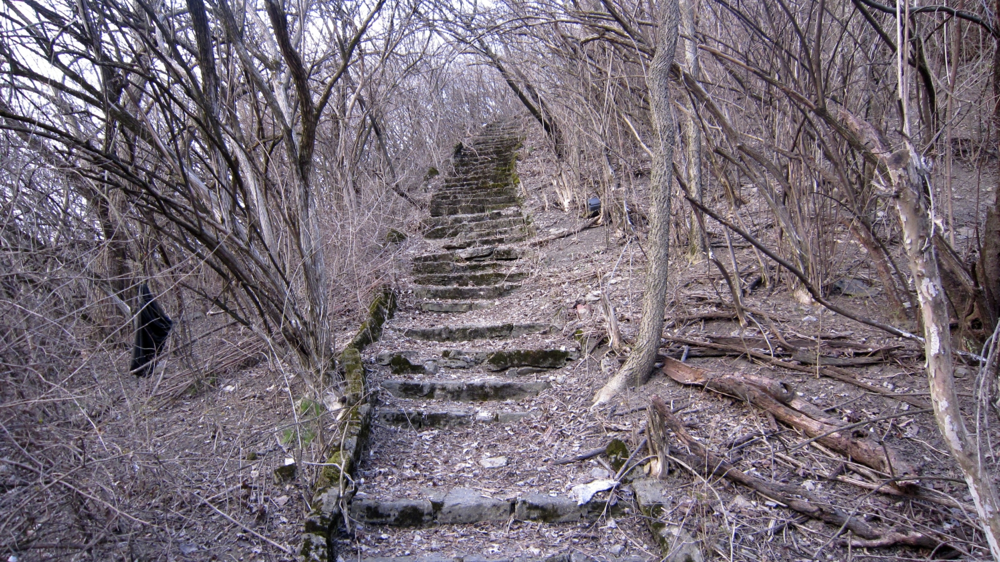 Abandoned Steps - Cincinnati